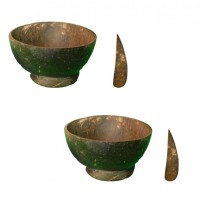 Traditional Salad Bowl with spoon Combo